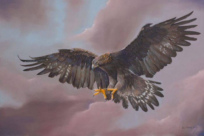 Eric Timms - Axl the Golden Eagle