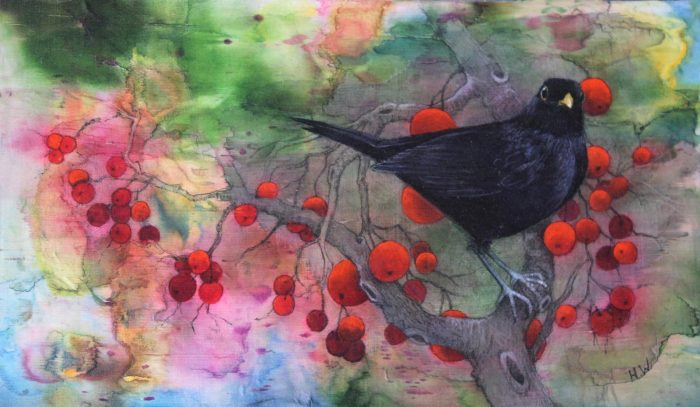 Helen Welsh - Blackbird