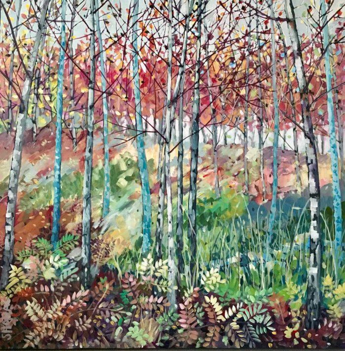Shona Mackenzie - Rain in Bear Wood
